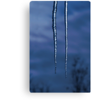 Icicles In The Moonlight Canvas Print