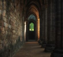 Kirkstall Abbey Cloisters by Tim Waters