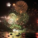 Sydney harbor fireworks 2013 by Fledermaus