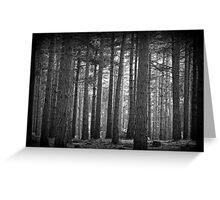 Troll Forest Greeting Card