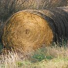 Hay Bale by mcstory