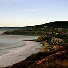 Orange County Coastline  by lechnera09