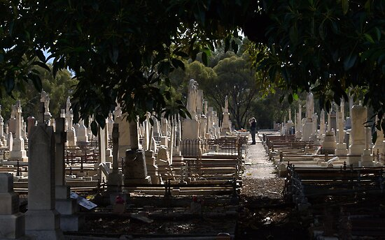 Photographer In The Cemetary by Ben Loveday