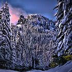 To Feel His Touch by Charles & Patricia   Harkins ~ Picture Oregon