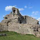 Queen's Hope, Caergwrle Castle  by Catherine Longhurst