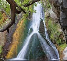 Darwin Falls by Kim Barton