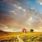 Dream house by albulena panduri