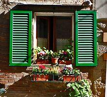 Street Level Window by phil decocco