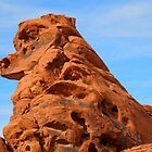 Sandstone Dog Rock by djackson