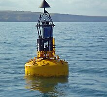 Whitby Bell Buoy by Rod Johnson