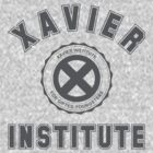 XAVIER INSTITUTE - GRAY by lewtengco