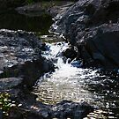 flowing water by lilli robertson