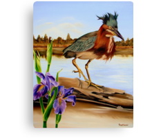 Green Heron Dance Canvas Print