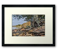 Itchenor, West Sussex. Framed Print