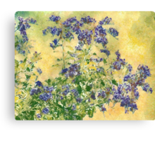 Flowers in the Garden Canvas Print