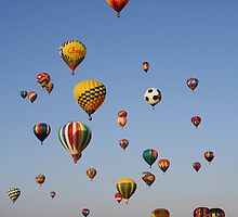 Great Reno Balloon Race,Reno Nevada USA by Anthony & Nancy  Leake