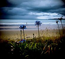 Beach Flowers by Karen Lewis
