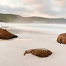 Squeaky Beach, Wilsons Promontory, Victoria, Australia by Michael Boniwell