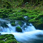 Green waterfall by jul-b