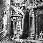 Temples of Angkor, Cambodia by Joanne Piechota