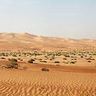 Sand Ocean by Fran0723