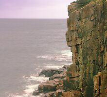 Otter Cliffs, Acadia National Park by Roupen  Baker