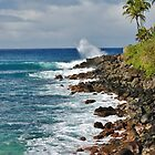 Waimea Bay by Paul Laubach