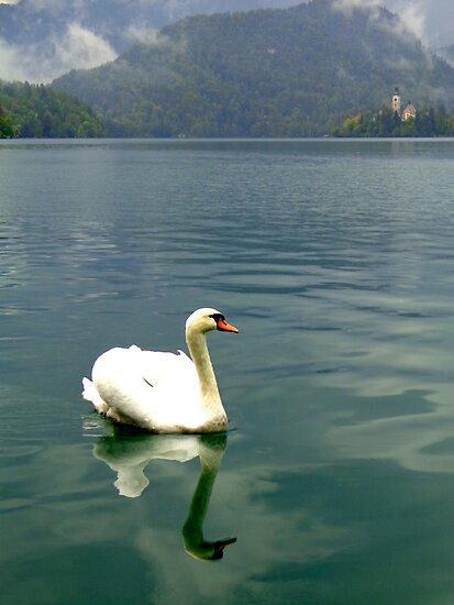 Pilgrimage Church, Lake Bled, Slovenia by christazuber