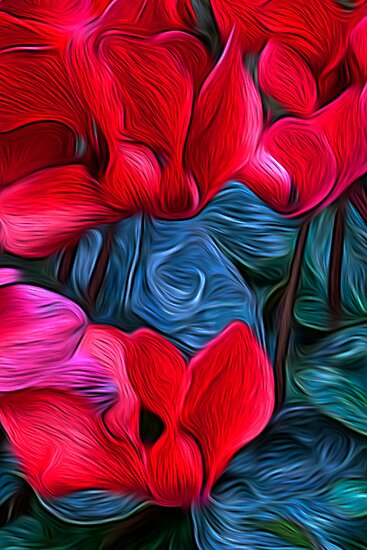 Cyclamen Dreams by Brendon Perkins