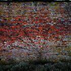 the walled garden III by yorktone