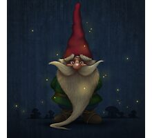 Gnome Photographic Print