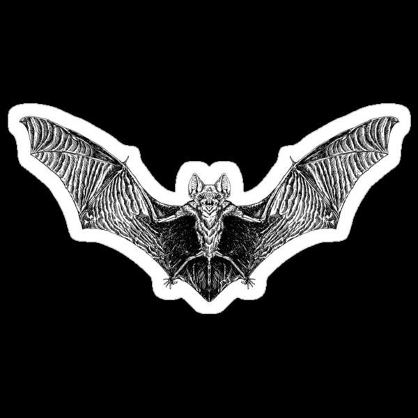 Vampire Bat by ZugArt