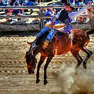 Harvey Dickson's rodeo 2012, Boyup Brook WA by mrobertson7
