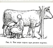 Where Milk REALLY comes from! by George Petrovsky