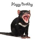 A Tasmanian Devil birthday card 3L by Gerry Pearce