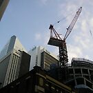 thee cranes ov Brisbane 2013 DAILY TOUR - Day 8 by Craig Dalton