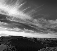 North Devon Landscape by EdPettitt