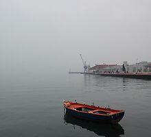 Color in a grey day II  by mkokonoglou