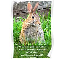 This Is A Ferocious Bunny Poster