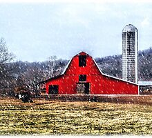 Cold Winter Day on The Farm by franzsfotos