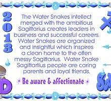 Chinese Zodiac, water snake, 1953, 2013, born, Sagittarius  by Valxart