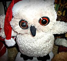 Snow Owl Santa Toy - 25/12/2012 by EdsMum