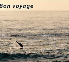 Bon voyage by Tony Steinberg