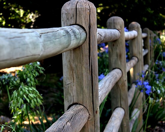 Garden fence by fourthangel
