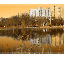 Across the Lake by Karmyn Tyler Cobb