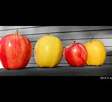 Washington State Honeycrisp And Golden Delicious Apple by © Sophie Smith