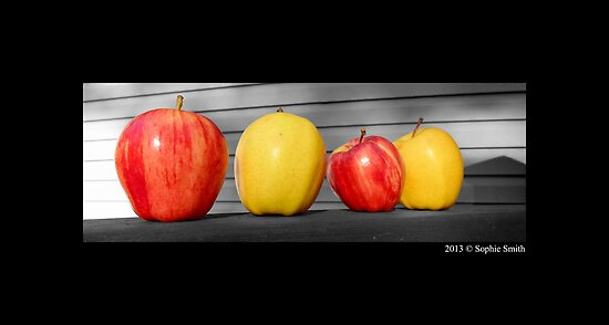 Washington State Honeycrisp And Golden Delicious Apple by © Sophie W. Smith