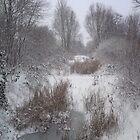 winter Wonderland by JulieB195