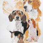 Beagle with Ghost Image by BarbBarcikKeith