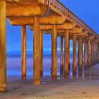 Scripps Pier - California by Reese Ferrier